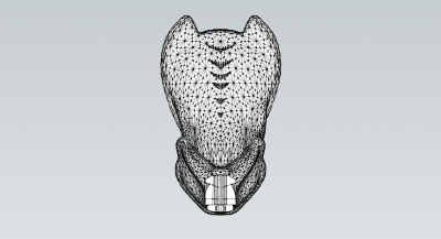 pdo mask with shell smoothed inner details.png